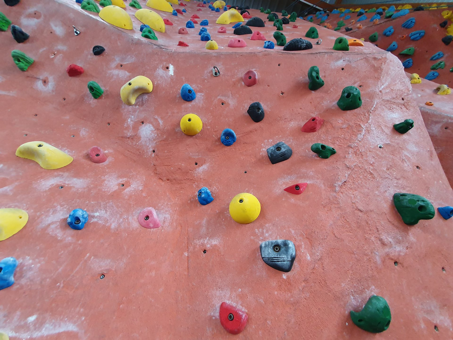 Read more about the article Ergo im Magic Mountain